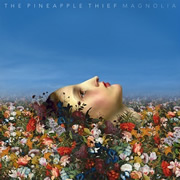 Pineapple Thief